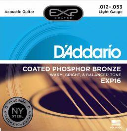 D'Addario exp16_main