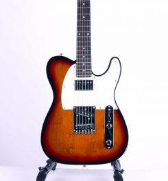 ESP-LTD-RON-WOOD-3TB-Front-electric-guitar-c